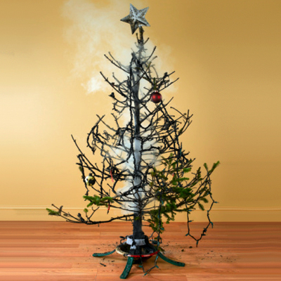 Unthinkable House Plant Tree. Holiday Lay Offs  How to do the Unthinkable Michael Gambuto